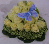 hartje-wit-met-vlinder-1